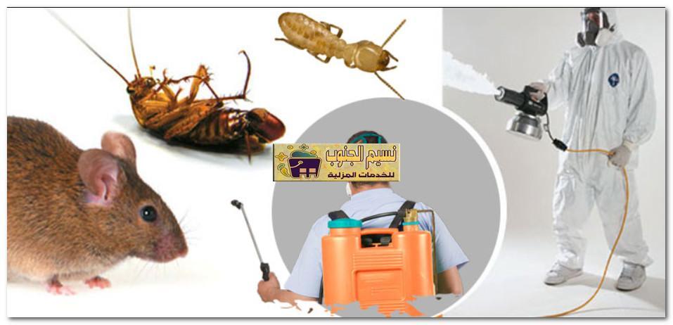 ارخص شركة مكافحة الحشرات بالعارضه