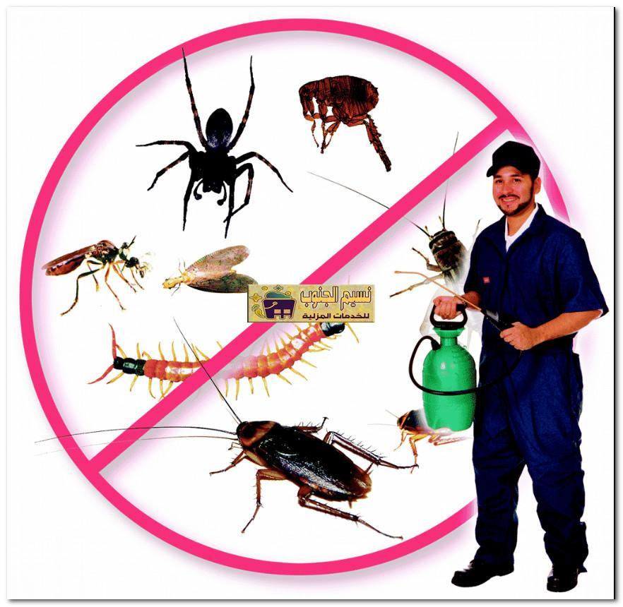 افضل شركة مكافحة حشرات بالعارضه