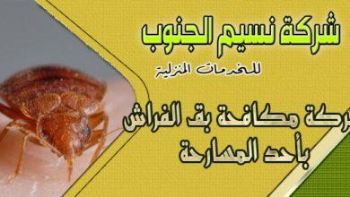 Photo of شركة مكافحة بق الفراش باحد المسارحه