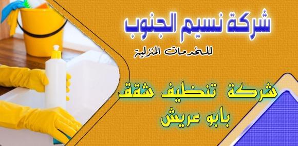 شركة تنظيف شقق بابو عريش