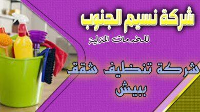 Photo of شركة تنظيف شقق ببيش