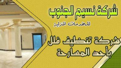 Photo of شركة تنظيف فلل باحد المسارحه