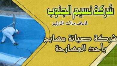 Photo of شركة صيانة مسابح باحد المسارحه
