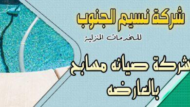 Photo of شركة صيانة مسابح العارضه