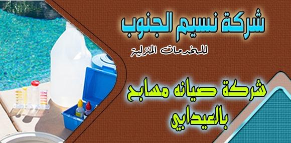 شركة صيانة مسابح العيدابي