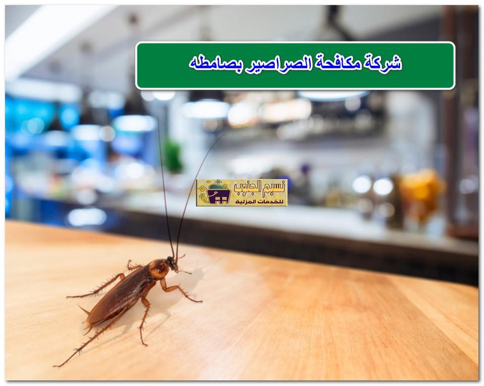 شركة مكافحة الصراصير بصامطه