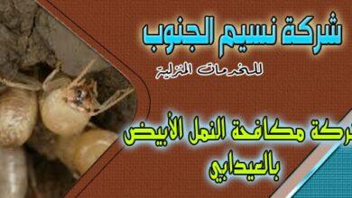 Photo of شركة مكافحة النمل الابيض العيدابي