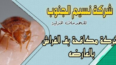 Photo of شركة مكافحة بق الفراش بالعارضه