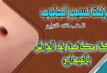 Photo of شركة مكافحة بق الفراش العيدابي