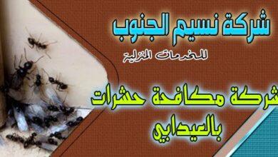 Photo of شركة مكافحة حشرات العيدابي