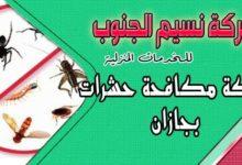 Photo of شركة مكافحة حشرات بجازان اتصل بنا 0533862196