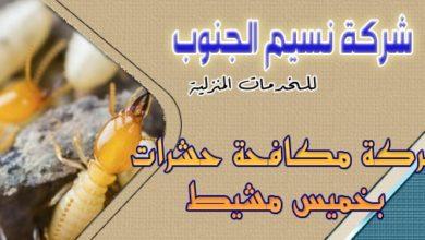 Photo of شركة مكافحة حشرات بخميس مشيط
