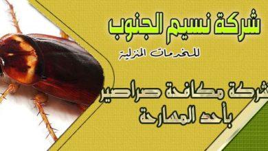 Photo of شركة مكافحة صراصير باحد المسارحه