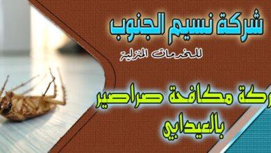 Photo of شركة مكافحة صراصير العيدابي