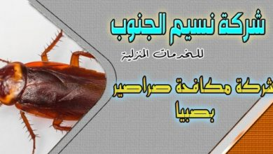 Photo of شركة مكافحة صراصير بصبيا