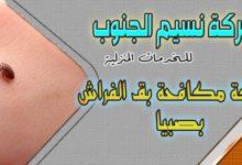 Photo of شركة مكافحة بق الفراش بصبيا