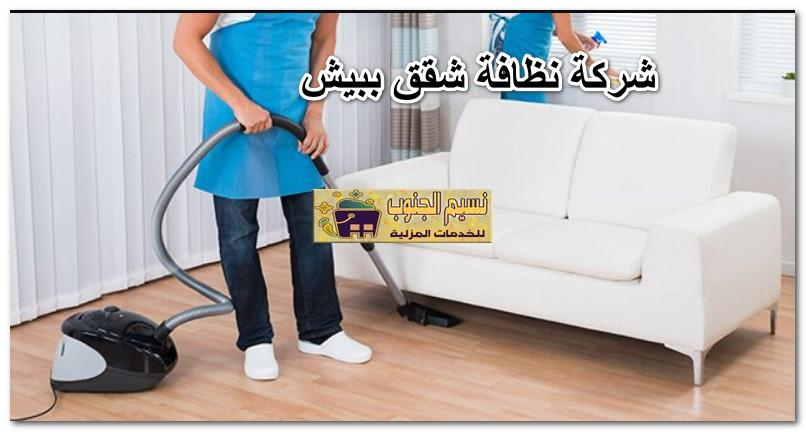 شركة نظافة شقق ببيش