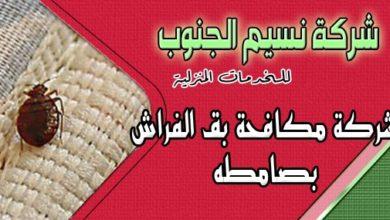 Photo of شركة مكافحة بق الفراش بصامطه